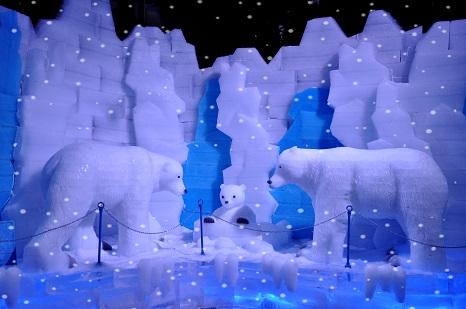 16北极熊一家
